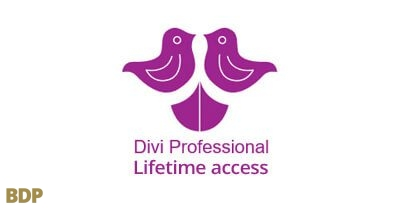 Divi Professional Lifetime Access
