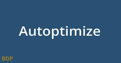 Autoptimize Website Speed Plugin